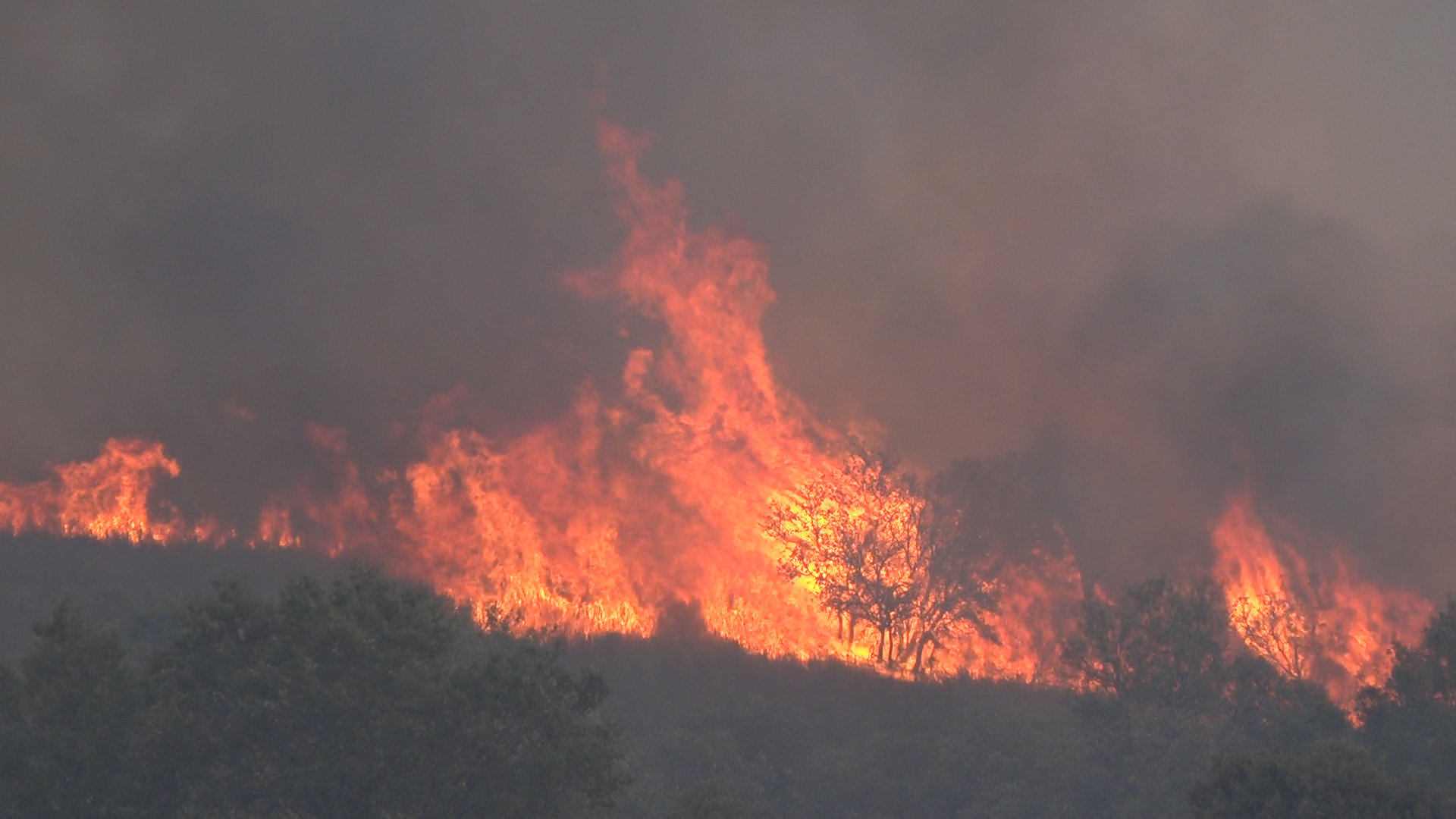 Incêndio em Valpaços obriga a evacuar aldeia e já arderam pelo menos três casas