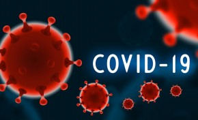 Covid-19: Mogadouro deixa de ter doentes infetados