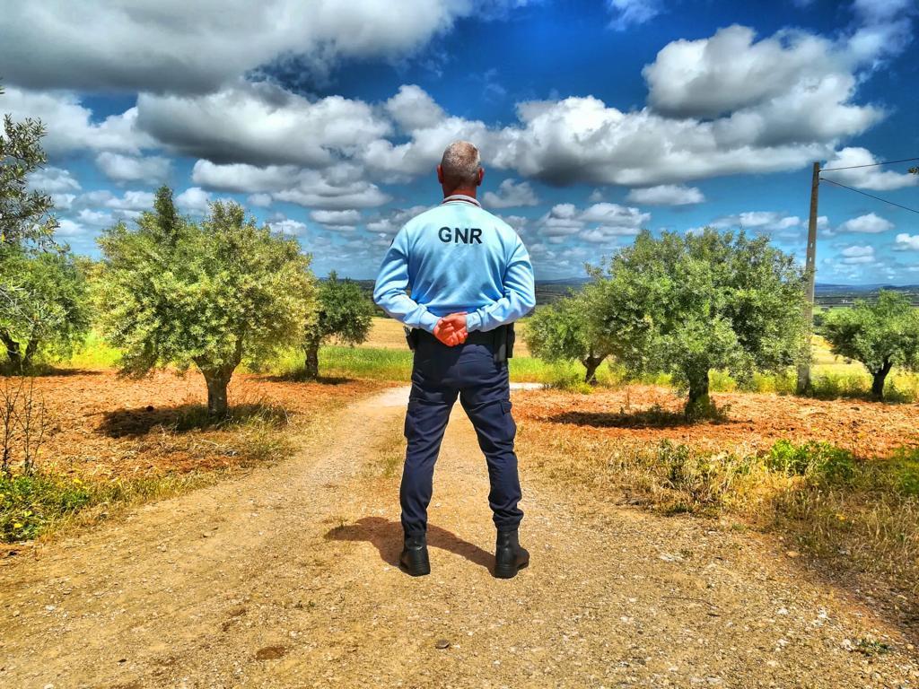 Operação Campo Seguro da GNR reforça fiscalização e aconselhamento até ao final do ano