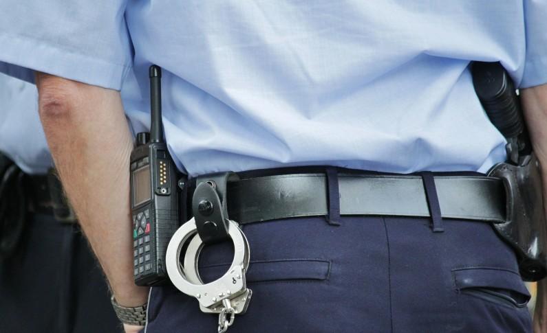 Homem detido por caçar espécies proibidas em Passos (Mirandela)