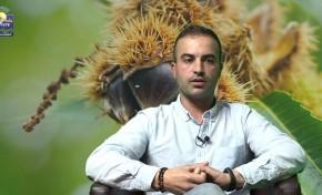 ONDA LIVRE TV – Conversa Aberta Ep. 4 | Com Paulo Pires sobre o setor da castanha