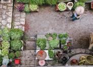 CIM-TTM permite realização de mercados de venda de produtos da terra
