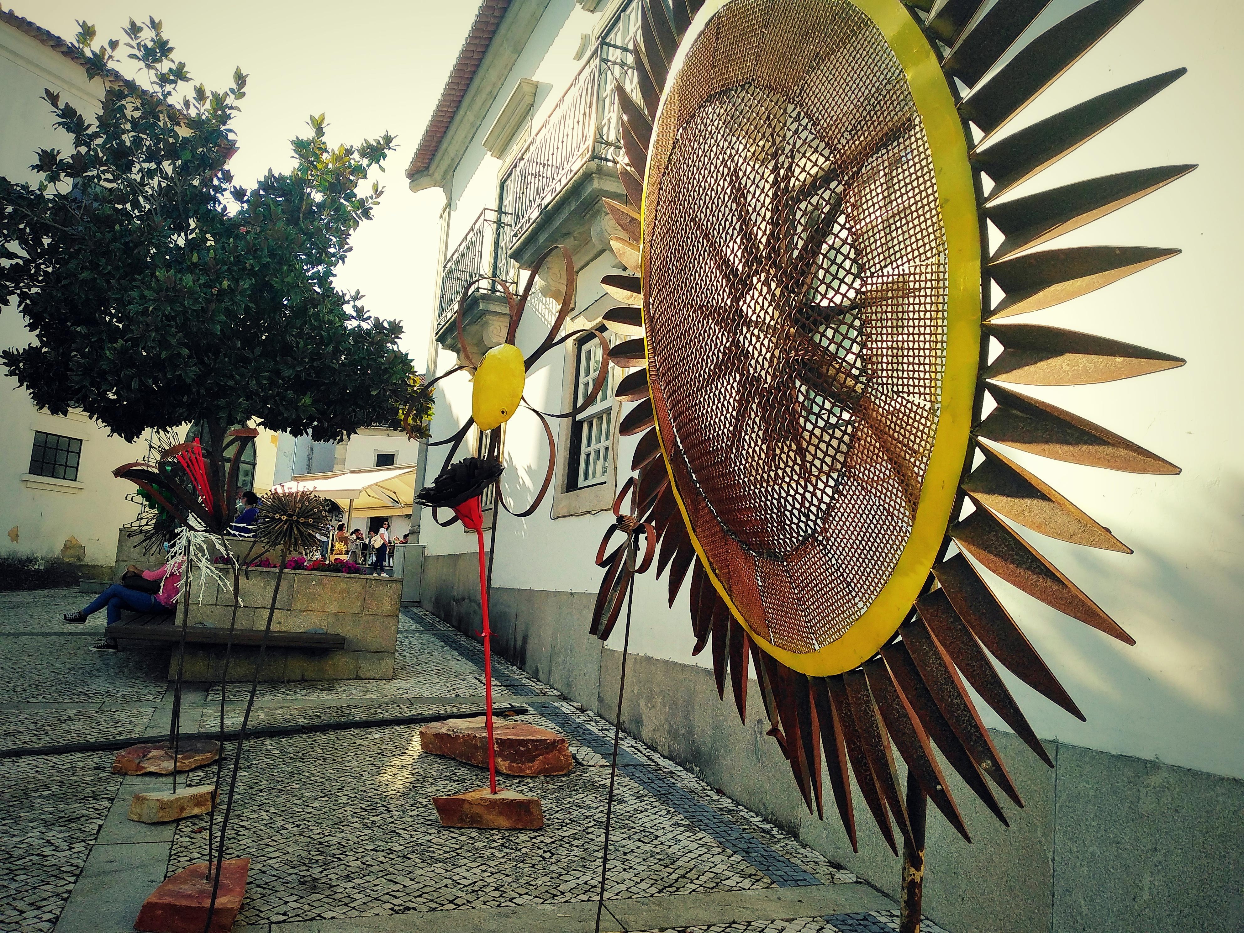 """""""Simbiose"""", a exposição de arte urbana que pode visitar em Macedo de Cavaleiros até outubro"""