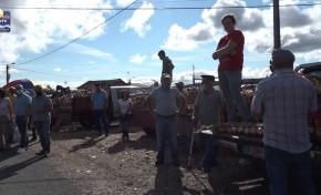ONDA LIVRE TV – Feira das Cebolas de Chacim cumpre tradição secular